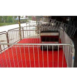 供应仔猪养殖设备-仔猪养殖栏-四川成都万春机械