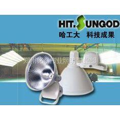 供应室内篮球馆、羽毛球馆、乒乓球馆适合用什么灯?场馆led照明灯具