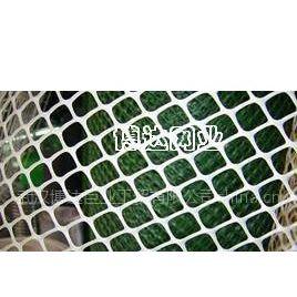 供应武汉博达丝网供应塑料平网/养殖网/万能网