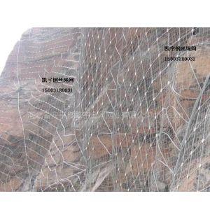 供应动物园专用钢丝绳网|电焊网