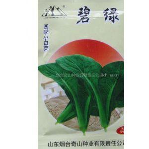 供应奇山碧绿四季小白菜种子