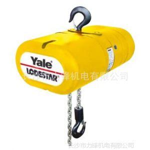 长沙力锋供应 原装进口 德国耶鲁yalelodestar 电动环链葫芦