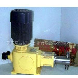 供应柱塞计量泵
