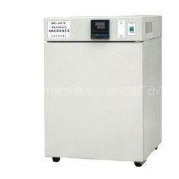 供应DNP-500-电热恒温培养箱