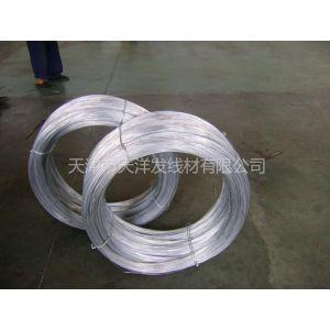 供应热镀锌高碳钢丝 刺丝 蔬菜大棚丝 石笼网丝