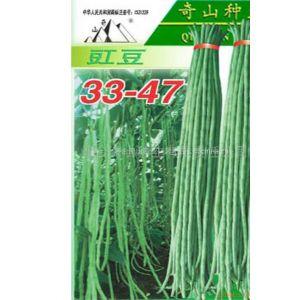 供应豇豆33-47种子