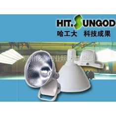 供应一般厂房、车间用什么灯?投灯和射灯那种更好一些?厂房照明优质灯具