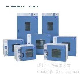 供应贵阳电热鼓风干燥箱、数显控制鼓风干燥箱、无尘净化工作台