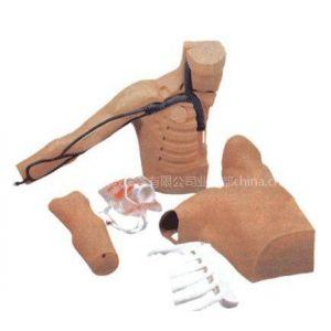 供应教学医学模型|外周穿刺、中心静脉穿刺插管模型