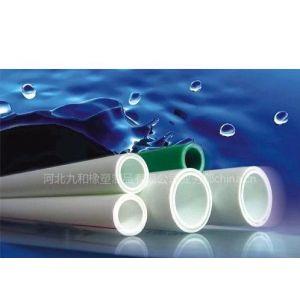 提供PP-R热水管价格报价 河北PP-R热水管型号到九和