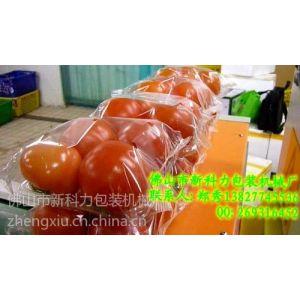供应蔬菜机械包装,蔬菜自动套袋包装机械