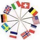 供应上海手摇旗制作,满足需求那曲仿古型旗帜制作、古代旗加工定做