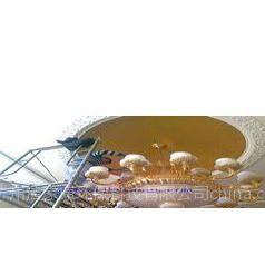 广州白云区水晶灯专业清洗公司