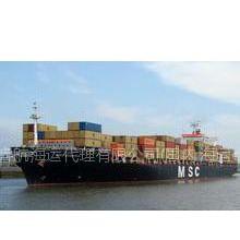 供应深圳到上海往返快线集装箱物流到门服务