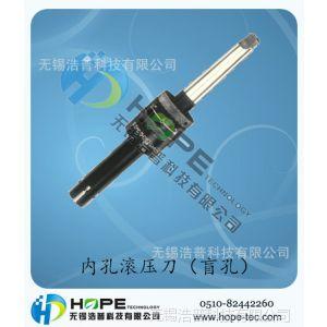 供应内孔滚压刀(盲孔) 全国销售 轴用内孔挤压刀 内孔滚光工具
