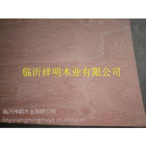 临沂板材生产厂供应胶合板包装板家具板