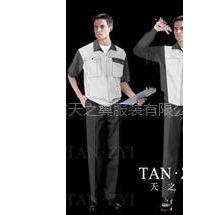 供应深圳工装制服、西服、职业装、衬衫、工程服
