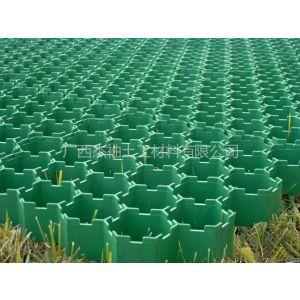 供应来宾植草格小区绿化草坪专用