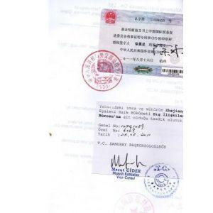供应EXPORTER  REGISTRY  FORM  公司登记表土耳其大使馆认证加签