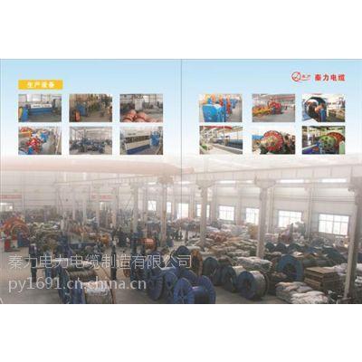 供应陕西电线厂、陕西秦力电缆厂(图)、西安bv电线厂家