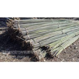 供应销售石竹