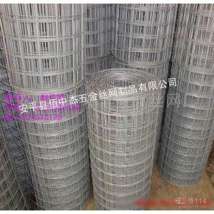 供应热镀锌电焊网、电(冷)镀锌电焊网