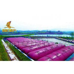 供应思嘉高性能红囊沼气池红泥软体沼气池处理设备
