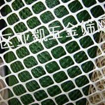 筛网广东筛网  供应塑料网,PE网,绿色养殖网铁丝网