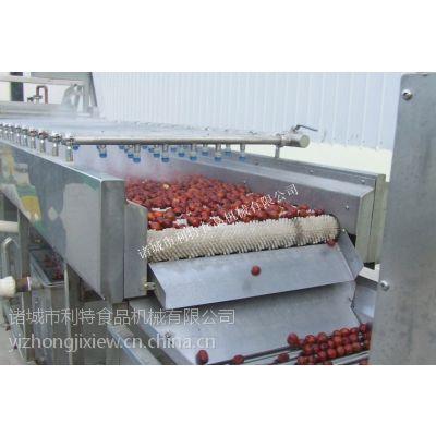 供应利特红枣清洗机、红枣清洗加工线、红枣生产线、红枣加工设备
