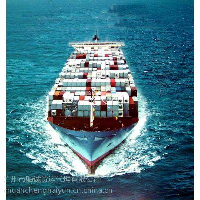 广州往山东潍坊海运物流运输 内贸集装箱供货量查询
