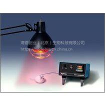美国Physitemp TCAT-2小动物温度控制器