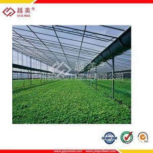供应供应农业温室大棚专用材料 PC阳光板 十年质保!