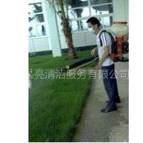 供应灭鼠广州灭鼠公司