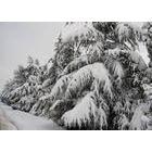 供应青州驼山滑雪场2012冬季滑雪门票免费预订