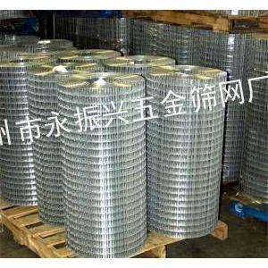 供应热镀锌电焊网,冷镀锌电焊网,广州电焊网厂家
