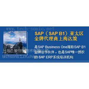 供应SAP Business One行业解决方案 上海达策
