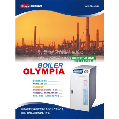 供应秦皇岛本地直销韩国奥林匹亚电加热蒸汽发生器