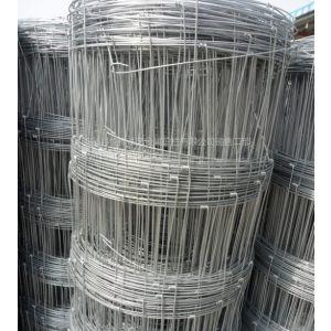 供应围栏网厂家