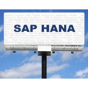供应SAP高性能分析设备HANA