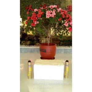 供应营口天元聚氨酯泡沫填缝剂-节能环保