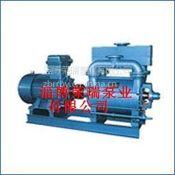 供应造纸设备水环真空泵