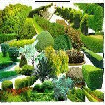 供应园林设计PSD素材(景观、园林)