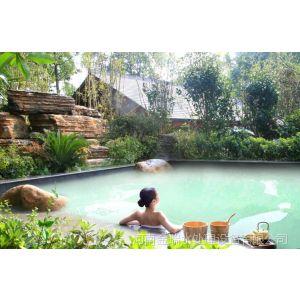 供应温泉水处理设备价格 温泉游泳池水处理系统 温泉泳池设备价格金瑞