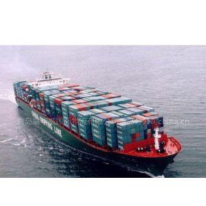 供应青岛--沙迦国际海运|中东-印巴航线|拼箱优势货代|空运一级代理