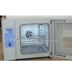 供应数显智能电热鼓风干燥箱/指针电热干燥箱