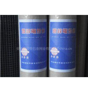 供应镀锌电焊网