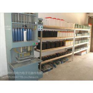 供应电动车蓄电池组装