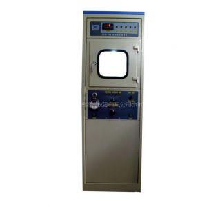 供应自动电压试验仪