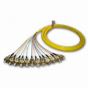 供应12芯尾纤
