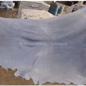 供应专业蓝湿皮进口清关,盐湿皮进口,牛皮进口,羊皮进口,半成品皮进口清关服务